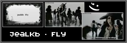 27-Fly